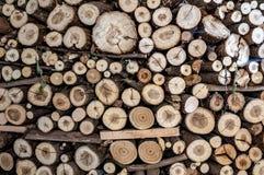 madeira, alinhada com cortado Imagem de Stock