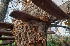 Madeira & metal Fotos de Stock
