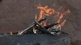 Madeira ardente video estoque