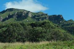 Madeira ardente Imagem de Stock Royalty Free