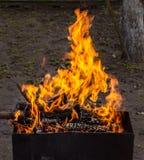 Madeira ardente em um caldeireiro Fogo forte na grade imagem de stock