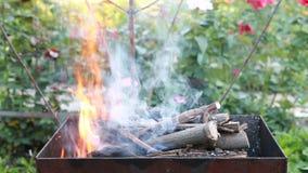 Madeira ardente em um caldeireiro Incêndio, flamas Grade ou assado filme