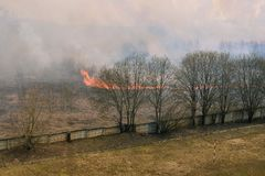 Madeira ardente Grama seca do inc?ndio florestal, fumo e chamas brilhantes Fogo de aproxima??o ?s casas Forte vento imagens de stock