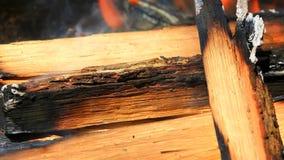 Madeira ardente na chamin? video estoque