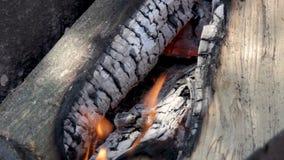 Madeira ardente no incêndio video estoque