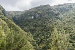 Madeira-Berge Lizenzfreie Stockfotos