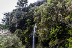Madeira-Berge und -wasserfall Lizenzfreies Stockbild