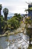 Madeira botanical garden Royalty Free Stock Photos