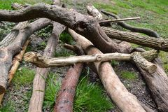 Madeira caída em rochas altas, Tunbridge Wells, Kent, Reino Unido Foto de Stock