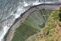 Madeira Cabo Girao Arkivfoton