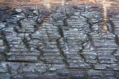 Madeira carbonizada Fotos de Stock