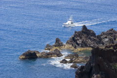 Madeira Coast Stock Images