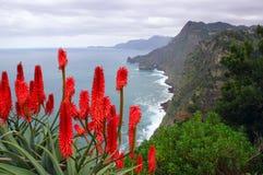 Madeira coast near Santana Royalty Free Stock Photo