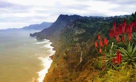 Madeira coast near Santana Royalty Free Stock Photography