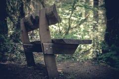 A madeira construiu o banco p?blico visto na borda de uma ?rea arborizada imagens de stock