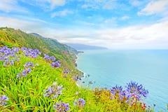 Madeira costline near Sao Jorge, north of the flower island Stock Images