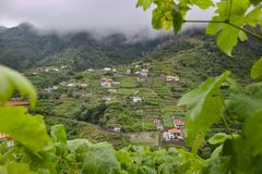 Madeira countryside scattered houses stock photo