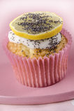 Madeira cupcake with poppy seed Stock Photos
