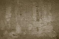 Madeira da casca Imagem de Stock