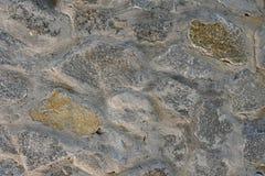 Madeira da construção do cimento da alvenaria do tijolo da casca de árvore da composição do fundo, ilustração do vetor