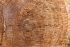 Madeira da madeira Fotografia de Stock Royalty Free