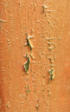 Madeira da oxidação Fotos de Stock