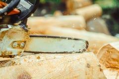 Madeira da serragem da serra de cadeia Fotografia de Stock