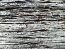 Madeira da textura Foto de Stock