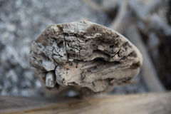 Madeira da tração Foto de Stock
