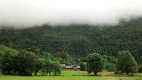 Madeira de Noruega Imagem de Stock