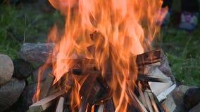 Madeira de queimadura na chaminé fora filme