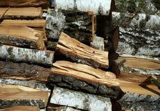 Madeira de vidoeiro, lenha composta em uma pilha, fundo Imagem de Stock Royalty Free