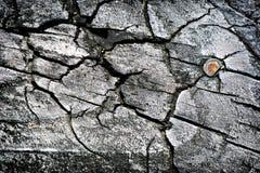 Madeira desvanecida com prego oxidado Imagem de Stock