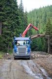 Madeira do carregamento do caminhão Foto de Stock