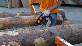 Madeira do corte do carpinteiro com a serra de cadeia profissional motorizada Som do tinber do corte filme