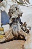 Madeira do duende Imagem de Stock Royalty Free