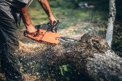 Madeira do fogo do corte do lenhador usando a serra de cadeia profissional Fotos de Stock