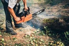 madeira do fogo do corte usando a serra de cadeia profissional Foto de Stock Royalty Free
