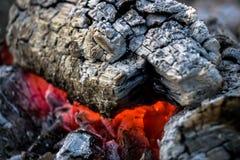 Madeira do incêndio Imagem de Stock Royalty Free