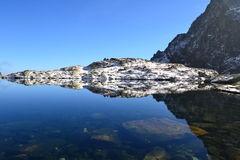 A madeira do parque do verde do céu azul da natureza da montanha nubla-se o reflexo do lago agradável Foto de Stock