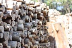 Madeira dos manguezais para o carvão vegetal Fotos de Stock