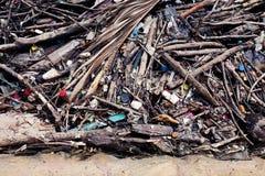 Madeira dos ramos do depósito da pilha do lixo, pilha das garrafas de madeira e plásticas desperdício e restos que flutuam na sup fotografia de stock