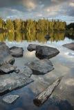 Madeira e pedras no lago Imagem de Stock