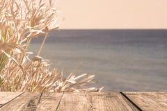 A madeira embarca na opinião do mar com planta Imagens de Stock