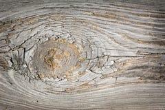 Madeira envelhecida com nó 1 Fotografia de Stock