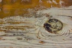 Madeira envelhecida velha do marrom amarelo Backgound e textura Foto de Stock