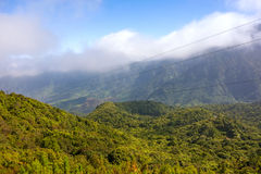 Madeira forest hill valley landscape Royalty Free Stock Photo
