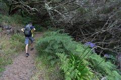 Madeira hiking Royalty Free Stock Photo
