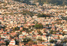 Madeira Houses. Houses on the hillside of Funchal Madeira Stock Photography
