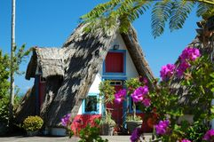 Madeira hut with straw roof and flowers. Old traditional Madeira hut with characteristic triangle thatched roof stock image